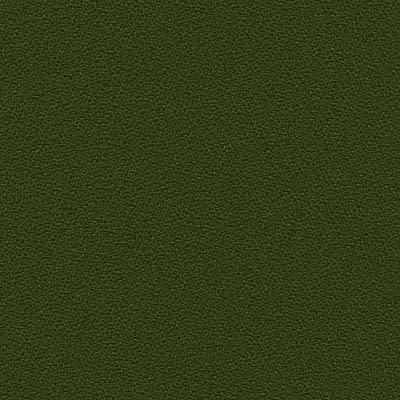 Anchorage 2335-2840 fern